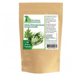 Gélules d'Artemisia Annua (Armoise annuelle)